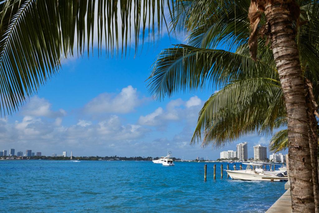 Miami Beach Real Estate - Pobiak Properties Cover